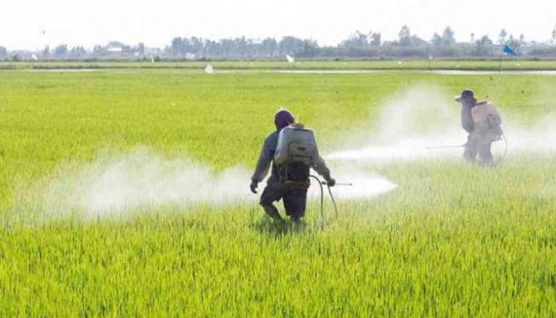 coltivatori-usano-glifosato-Monsanto