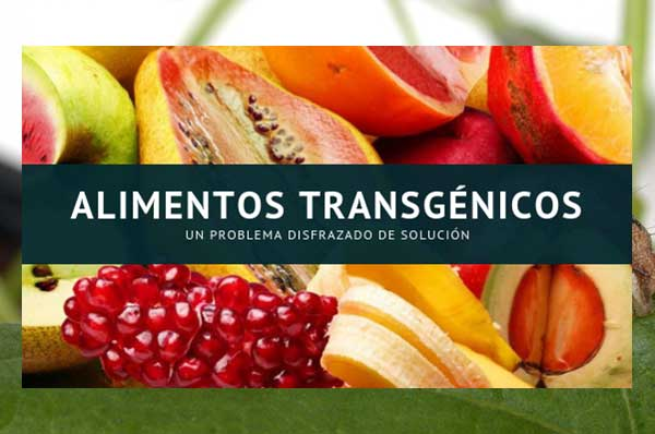 Alimenti-transgenici