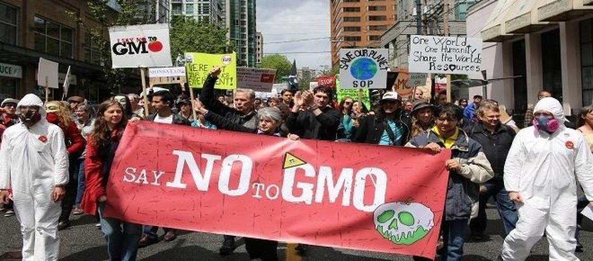 manifestazione -no-OGM