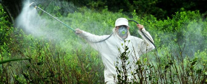 irrorazione-campi-con-pesticidi