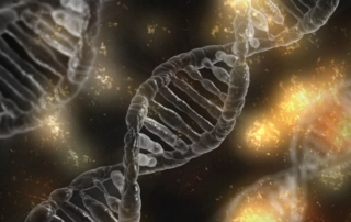 Il DNA interagisce con l'ambiente