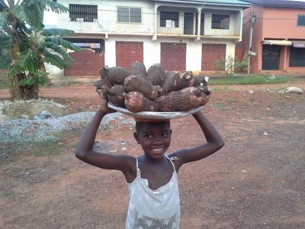 bimbo vende cassava