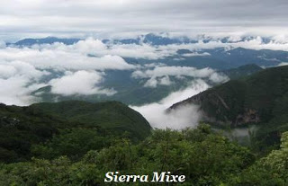 panorama della sierra Mixe