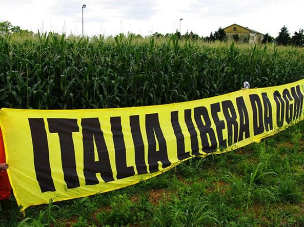 NO a mais GM in Italia